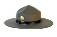 Army D.I. Hat