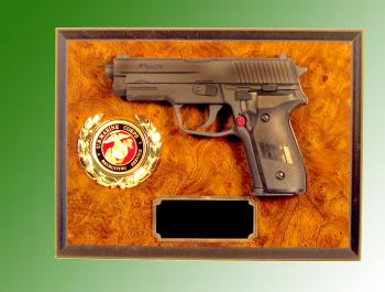 wall gun plaque