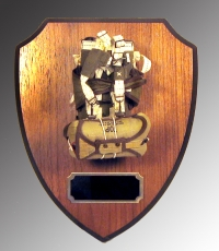 standard parachute on shield plaque