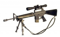 M16A1 w/mil spec scope and foldable bi pod