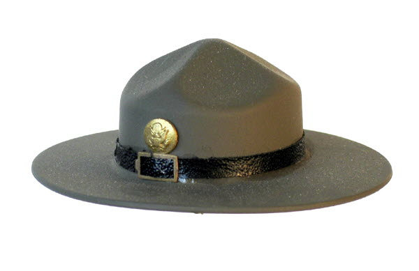 Army D.I. Hat - Click Image to Close
