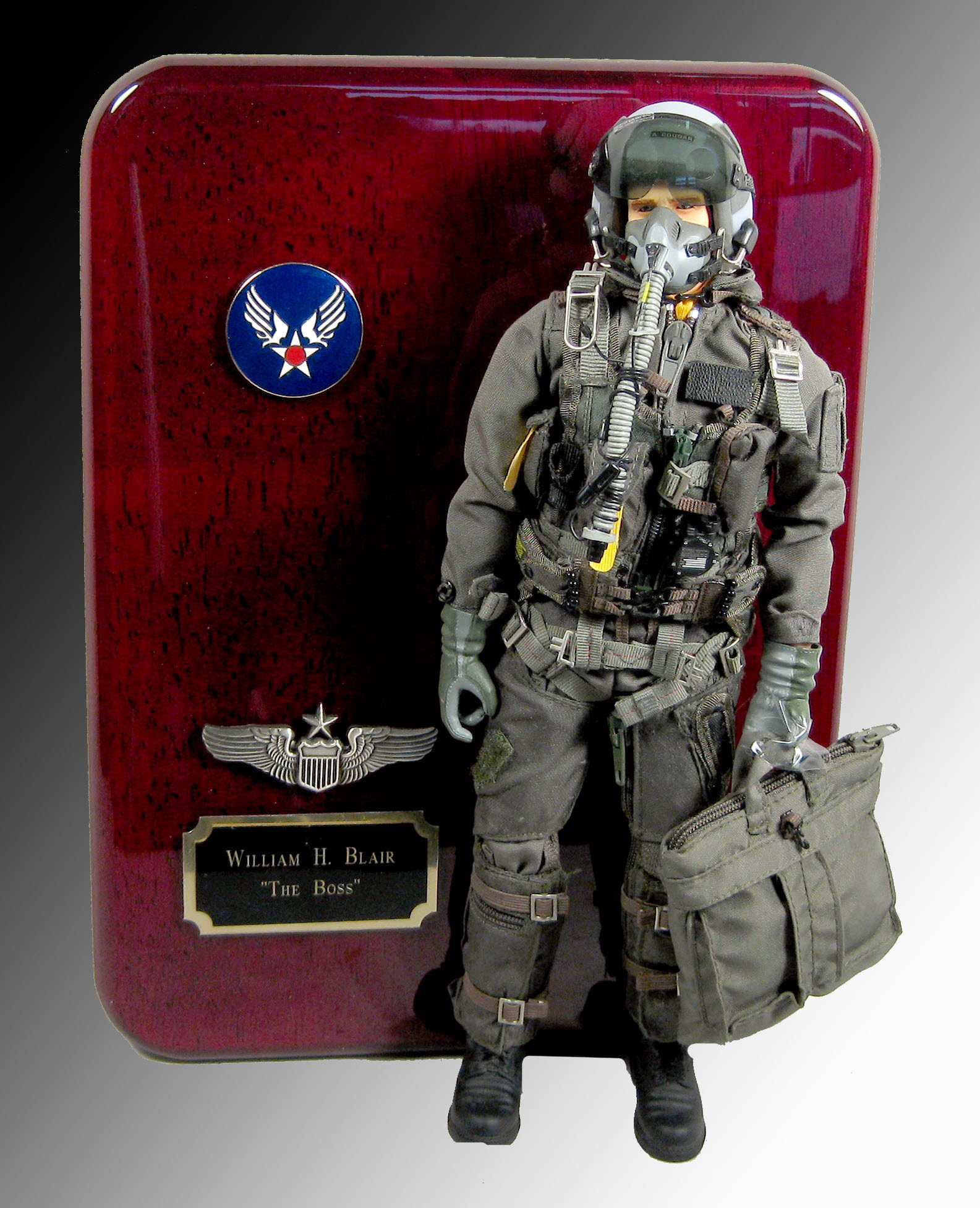 Air force aviator in full attire plaque - Click Image to Close
