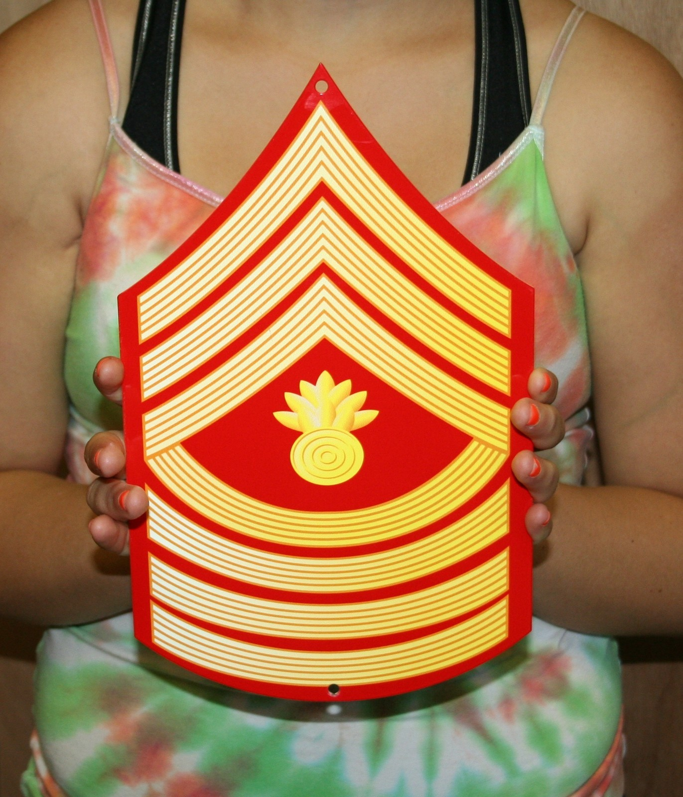 USMC E9 Master Gunnery Sgt rank Red & Gold metal sign - Click Image to Close